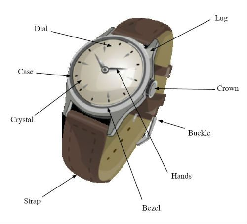 Watch fugure with elements / parts pointed out