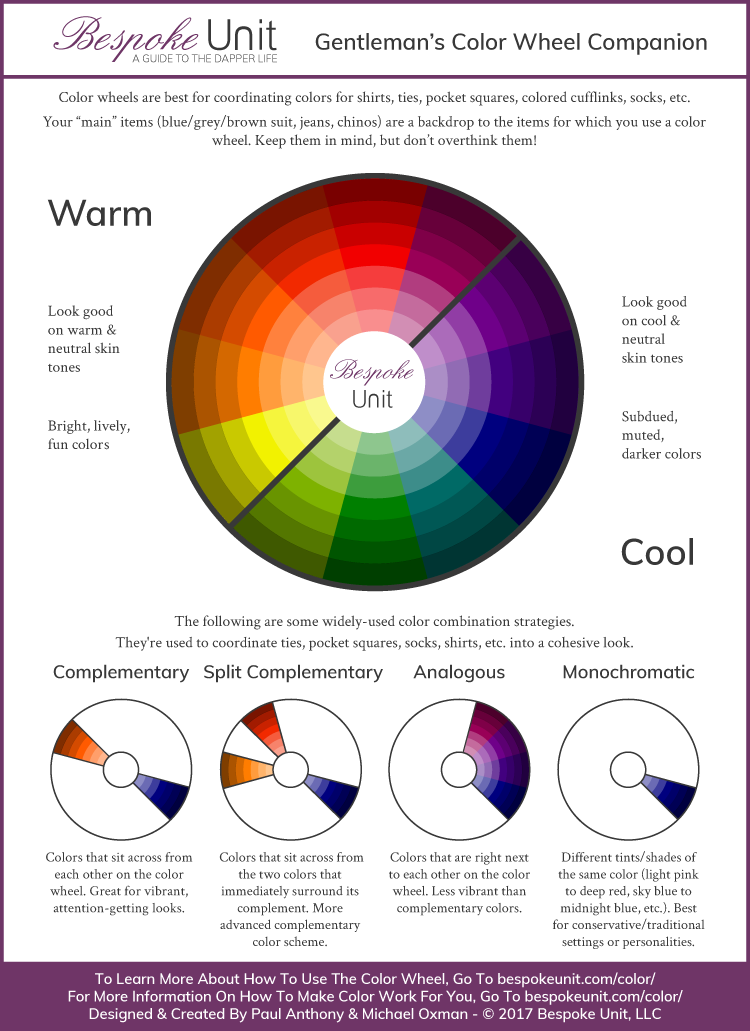 Color Wheel Infographic