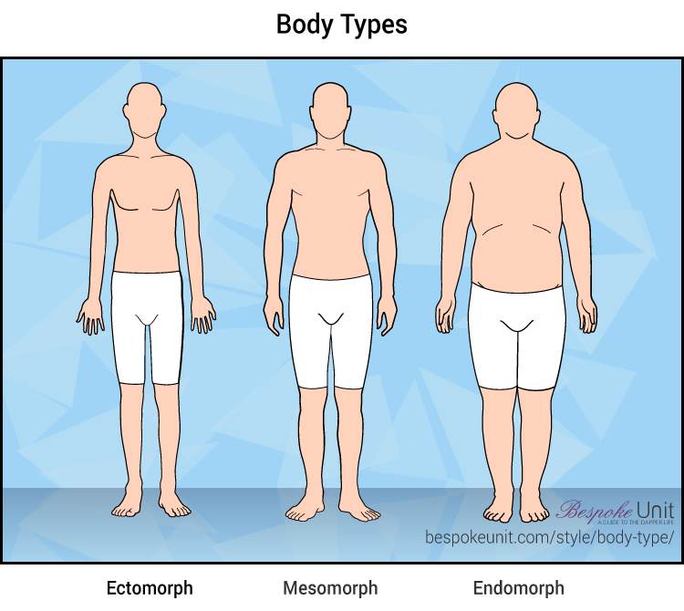 The Ultimate Guide To Male Body Types Understand Your Bodys Frame