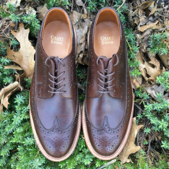 Brown Longwing Men's Shoes on leaves