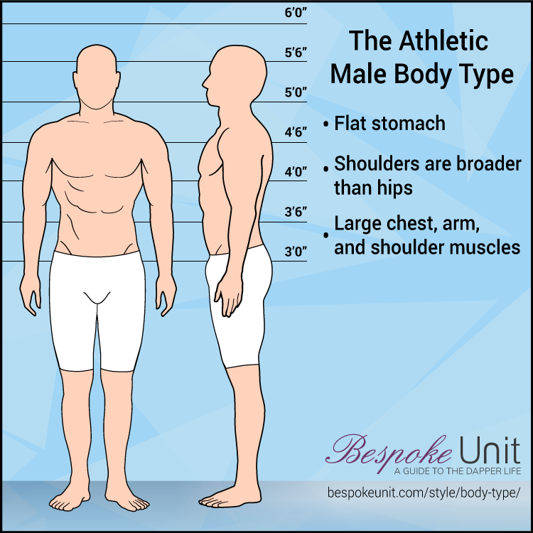 Athletic Male Body Type Graphic