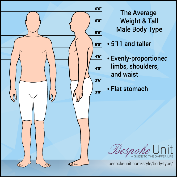 Average Weight Tall Male Body Type