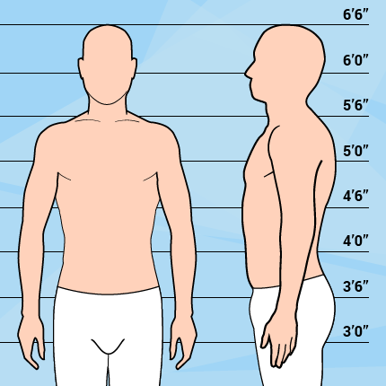 Graphic Of Average Weight & Tall Man