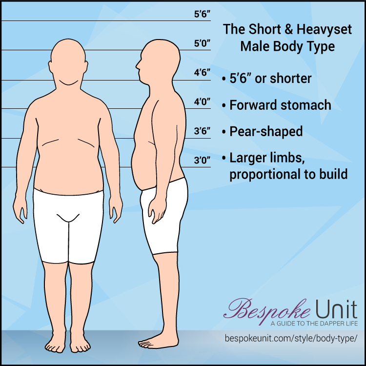 Portly Male Body Type