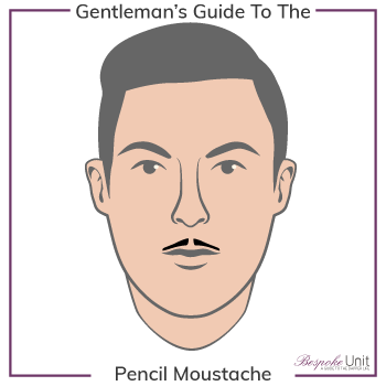 What Is a Pencil Thin Moustache Family