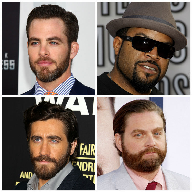 Celebrity Boxed Beards Ice Cube Gyllenhaal Galifianakis Chris Pine