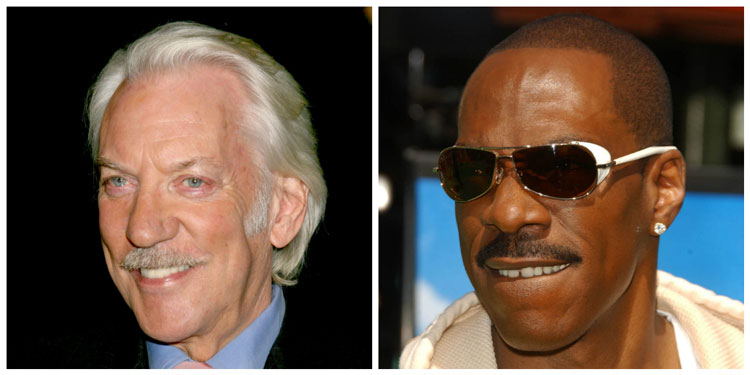 Celebrity Pyramid Lampshade Moustache Ideas Donald Sutherland Eddie Murphy