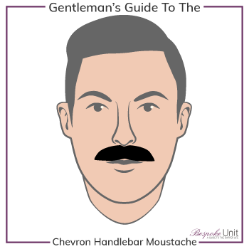 Graphic of Chevron Handlebar Family Moustache Type