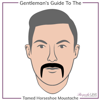 Graphic of Tamed Horseshoe Family Moustache Type