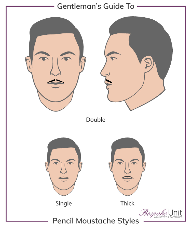 What Are The Different Pencil Thin Moustache Family Styles