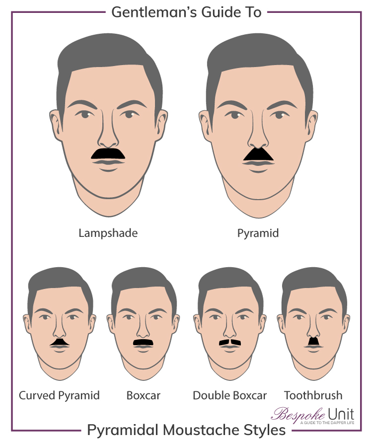 What Are The Different Pyramidal Moustache Family Styles