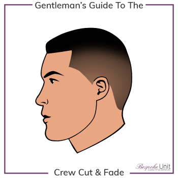 What Is A Fade Crew Cut Hairstyle Graphic