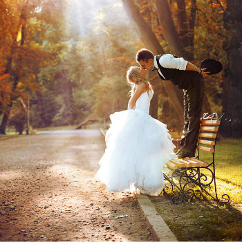 Newlyweds-Kissing-On-Park-Bench