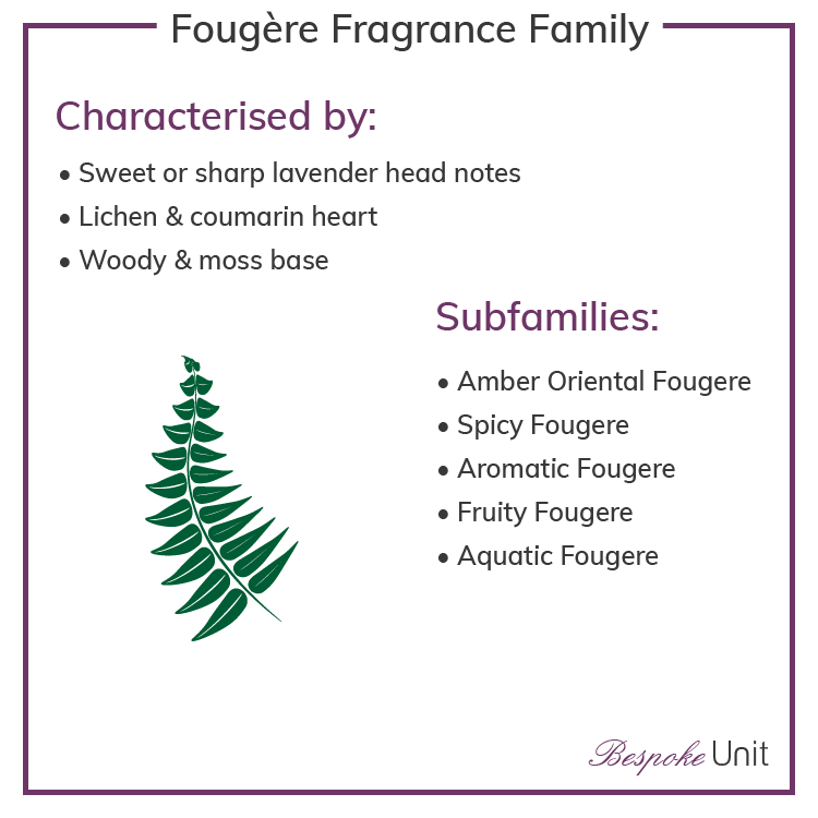 Fougere Olfactive Family Fragrances & Sub Groups