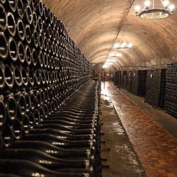 Underground Cellar Stacked Champagne Bottles