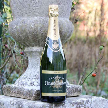 Canard Duchene Authentic Champagne Brut In Front Of A Stone Vase