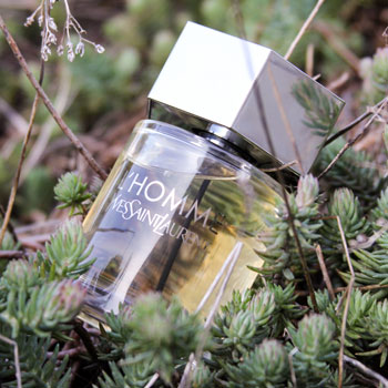 Yves Saint Laurent L'Homme Bottle In Green Plants