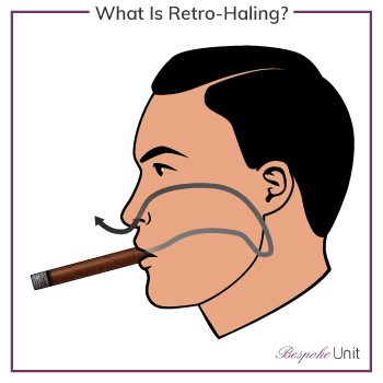 What Is Retro-Haling