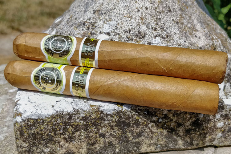 Macanudo Gold Label Cigar Review: A Refined & Sensual Yet Mild Smoke