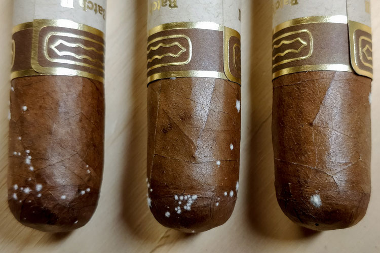 What Is Cigar Mold