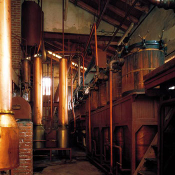 Poli Distillery Steam Alembic