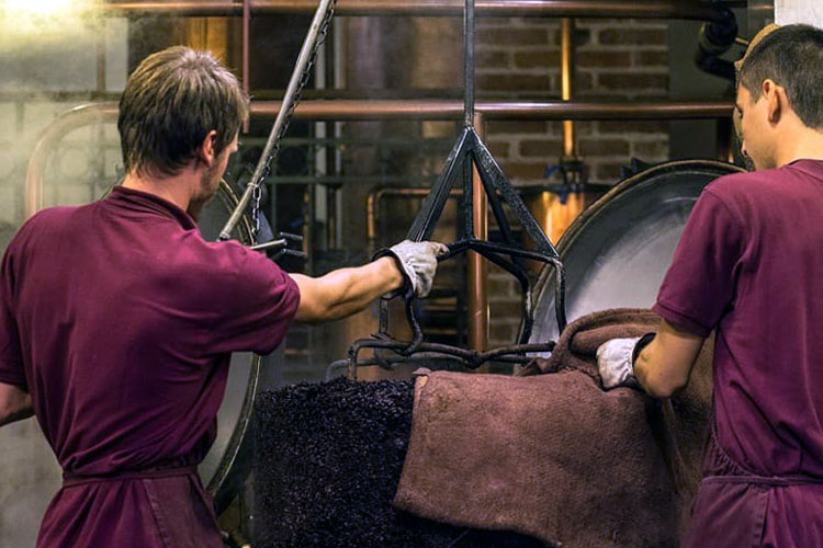 Workers Preparing Pomace At Poli Distillery